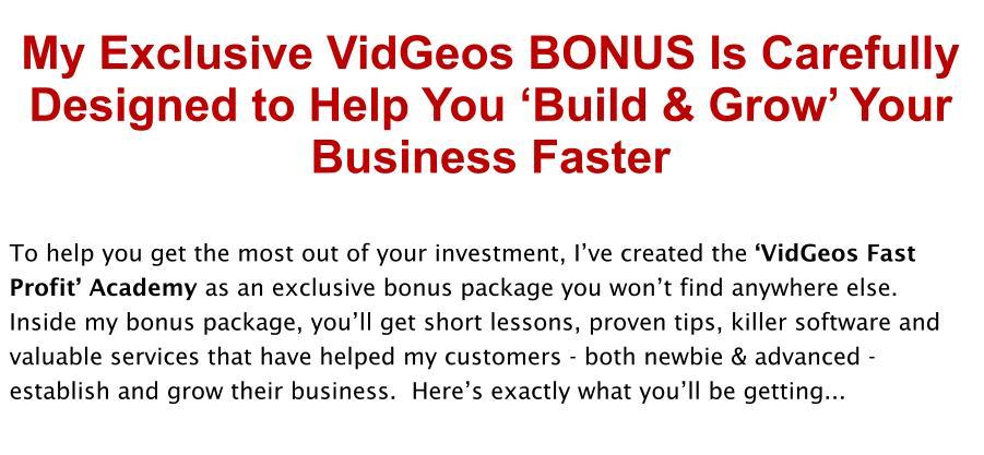VidGeos Review Bonus